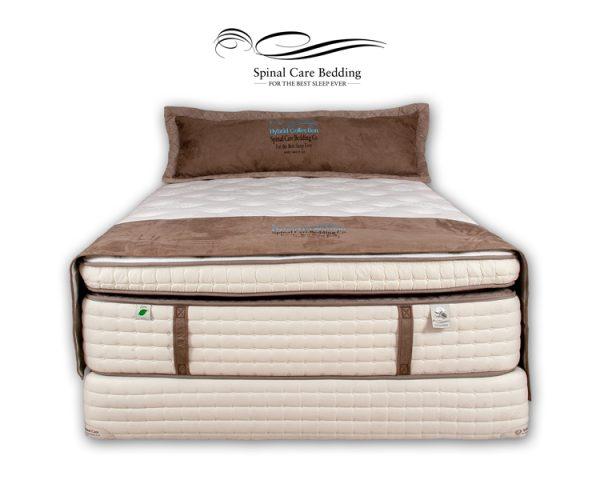 bodypedic-quantum-pillow-top