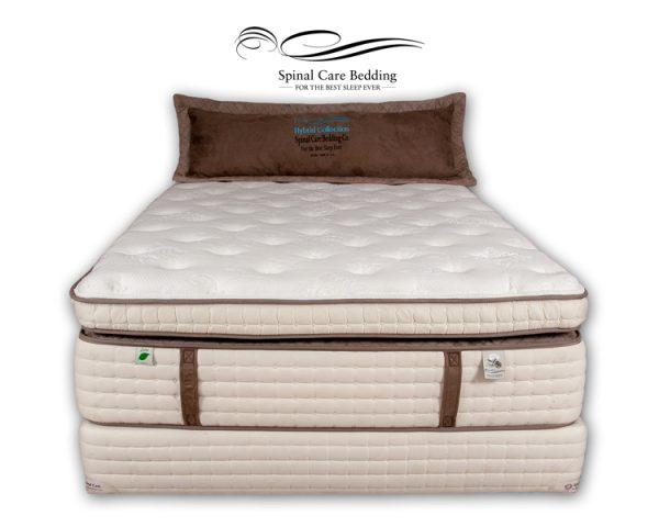 bodypedic-quantum-pillow-top1