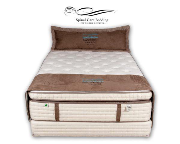 bodypedic-quantum-pillow-top2