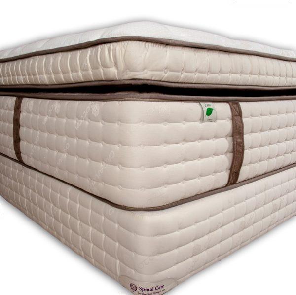 bodypedic-quantum-pillow-top4