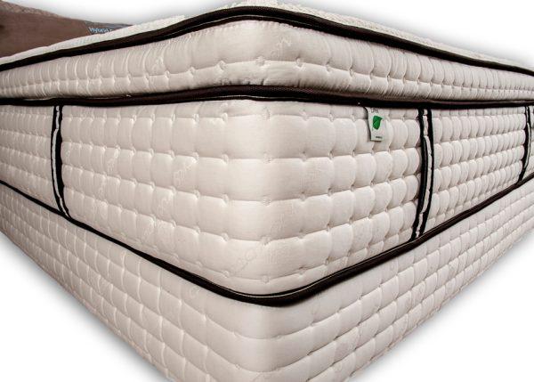 quantum-pillow-top2